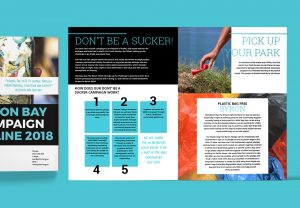 Booklet and brochure designed for positive change for marine life using creative design and layout. Australian non profit design.